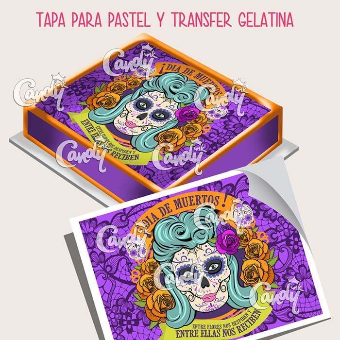 obleas-transfer fctr3315
